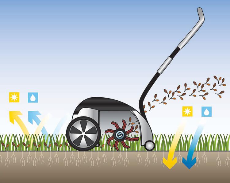 Lawn raking.