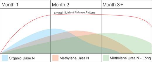 Slow release lawn fertiliser diagram.